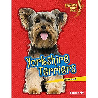 Yorkshire Terriers (Lightning Bolt Books (Tm) -- Who's a Good Dog?)
