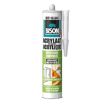 Bison Acrylaatkit 310 Ml
