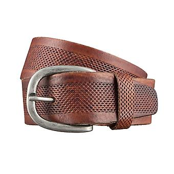 ALBERTO puntini retro belts men's belts leather belt Brown 3067