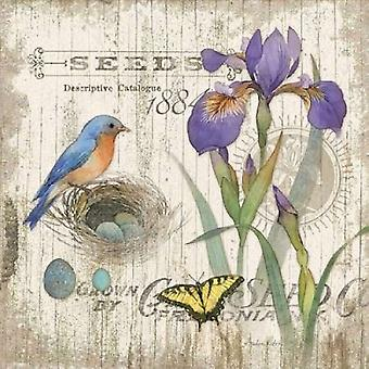 Artists Journal I Poster Print by Julie Paton