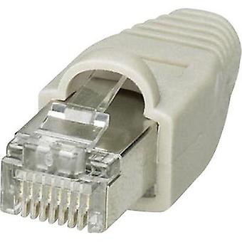 VS-08-NP-RJ45-GY Phoenix Contact Content: 1 pc(s)