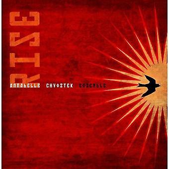 Annabelle Chvostek - anledning [CD] USA import