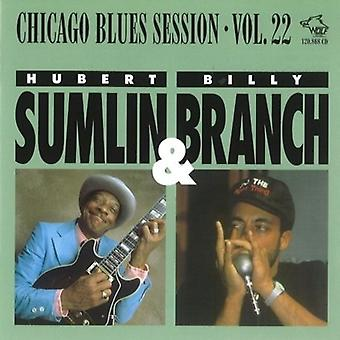 Hubert Sumlin & gren - Chicago Blues Session [CD] USA import