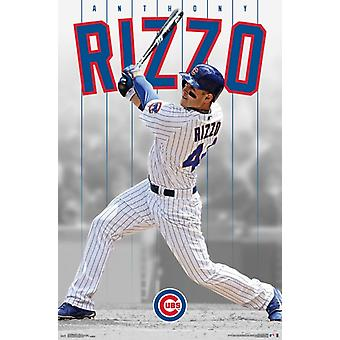 Chicago Cubs  - Anthony Rizzo 16 Poster Poster Print
