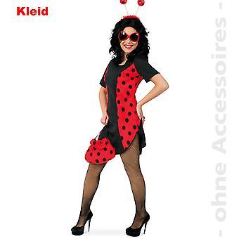 Ladybug Lady costume beetle dress Ladybird beetle ladies costume