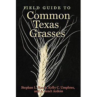 Field Guide to Common Texas Grasses (AgriLife Research and Extension Service Series)