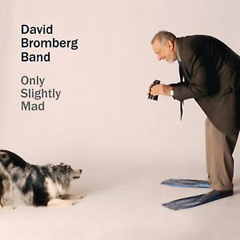 David Bromberg & Band - kun lidt gal [CD] USA import