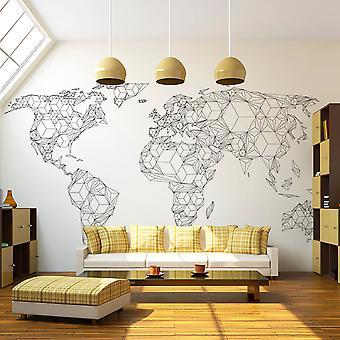 Tapet - kort af verden - hvide legemer