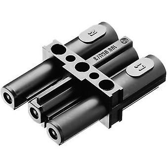 Mains double pole connector Mains plug - Mains socket Total number of pins: 2 + PE Black Adels-Contact AC 166 GKU/ 3 1 pc(s)