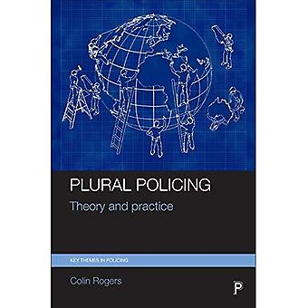 Plural Policing: Theory and Practice (Key Themes in Policing)