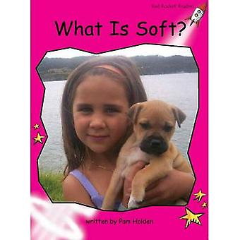 What is Soft? by Pam Holden - 9781927197646 Book