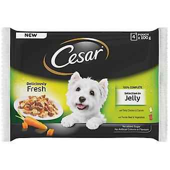 Cesar Selection In Jelly Pouch Multipack (Dogs , Dog Food , Wet Food)