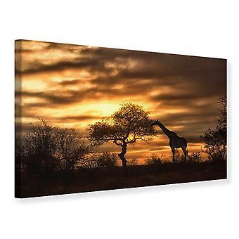Canvas Print African Dreams