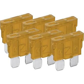 Standard flat fuse 6-pack 5 A Beige FixPoint 20380
