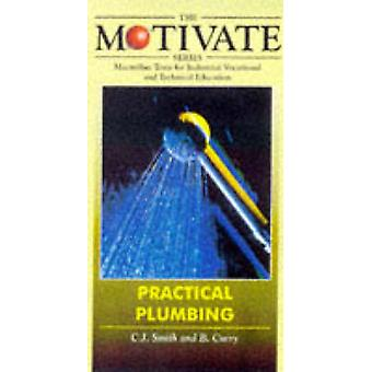Practical Plumbing by C. J. Smith - B. Curry - 9780333616574 Book