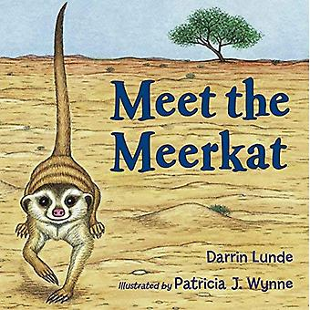 Meet the Meerkat (Want to Know More? Open the Book)
