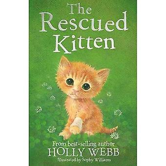 The Rescued Kitten (Holly Webb Animal Stories)