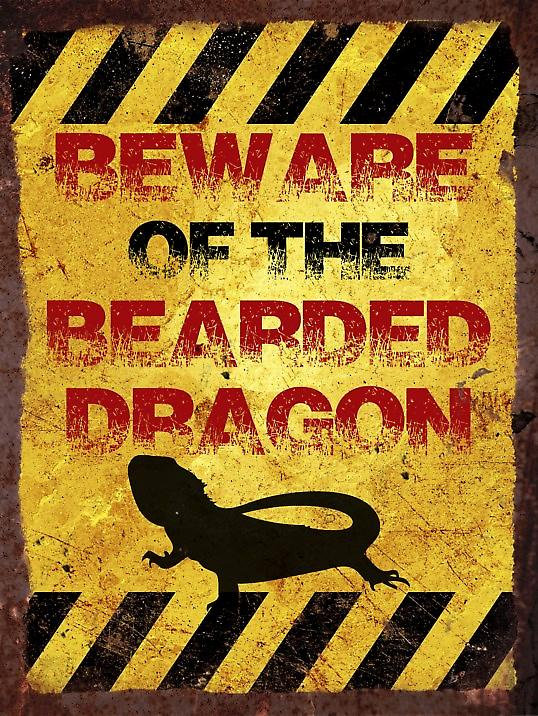Vintage Metal Wall Sign - Beware of the bearded dragon