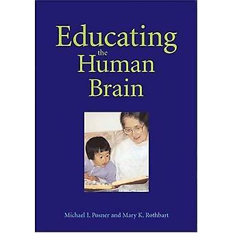 Utbilda den mänskliga hjärnan