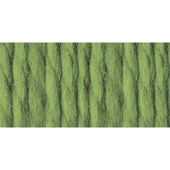 Wool Ease Thick & Quick Yarn Grass 640 131
