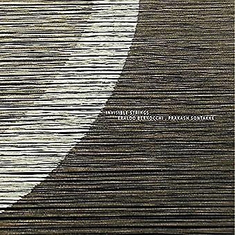 Bernocchi, Ernaldo / Sontakke, Tove - usynlige strenge [CD] USA import