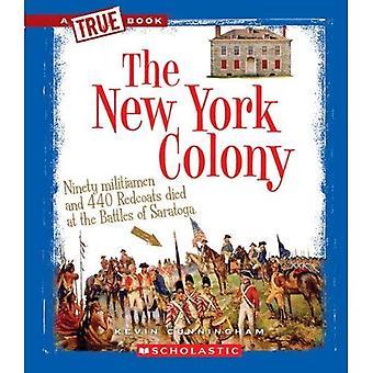 La colonia di New York