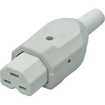 Hot wire connector C21 Socket, straight Total number of pins: 2 + PE 16 A White Kalthoff 1 pc(s)