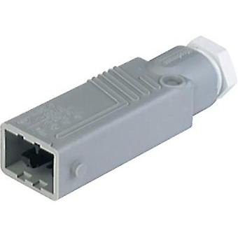 Mains connector Series (mains connectors) STAS Plug, straight T