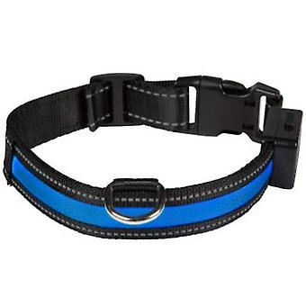 Num'axes USB-Light Blue Collar (Dogs , Walking Accessories , Collars)