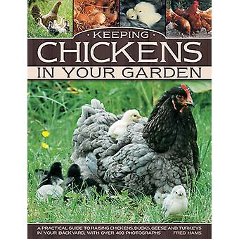 Keeping chickens in your garden - A Practical Guide to Raising Chicken