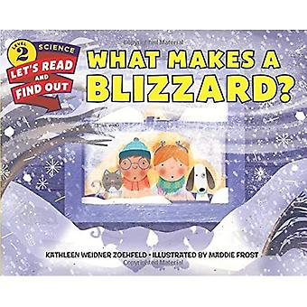What Makes a Blizzard? (Lets-Read-and-Find-Out Science Stage 2)