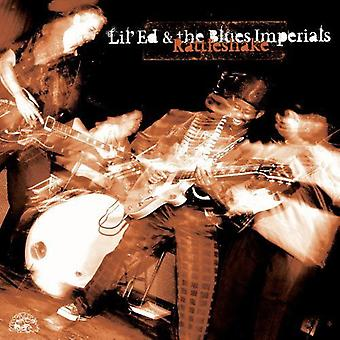 Lil' Ed & Blues Imperials - Rattleshake [CD] USA import