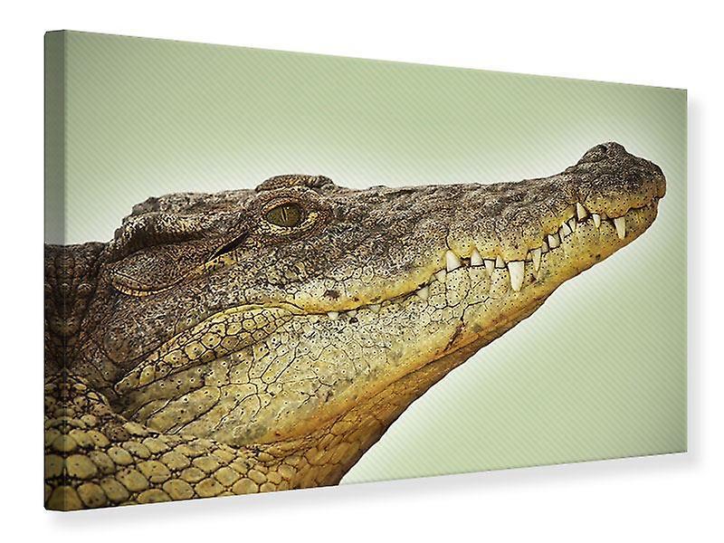 Toile impression proche place Alligator