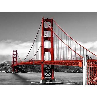 Golden Gate Bridge San Francisco Poster Print von Pangea-Bilder