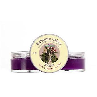 Flor De Mayo Lip Balm 8 G Pot Blackberry