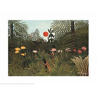 Virgin Forest Poster Print by Henri Rousseau (30 x 24)