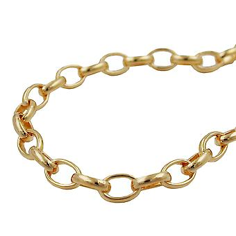 Anchor oval chain bracelet 19cm gold-plated