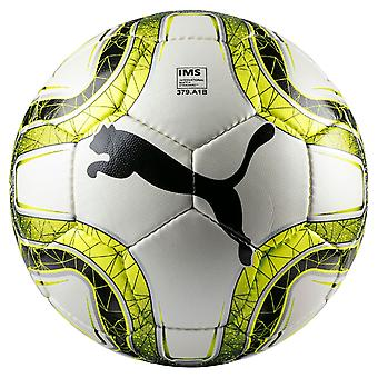 10 x PUMA game and training ball - FINAL 4 Club includes ball sack