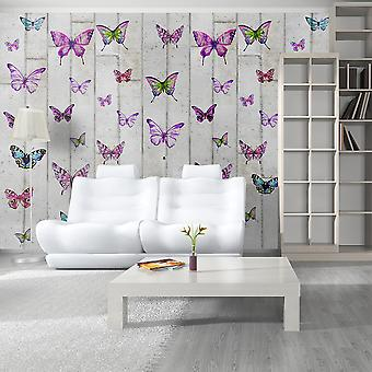 Wallpaper - Butterflies and Concrete