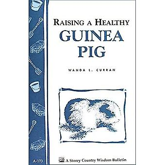Raising a Healthy Guinea Pig (Storey Country Wisdom Bulletin)