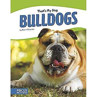 C'est mon chien: Bulldogs