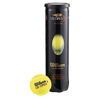 Wilson US Open balles de Tennis (Can 4 balles)