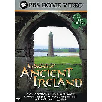 På jakt efter forntida Irland [DVD] USA import