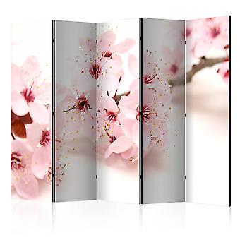 Room Divider -  Cherry Blossom II [Room Dividers]