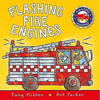 Flashing Fire Engines (Amazing Machines) [Board book]