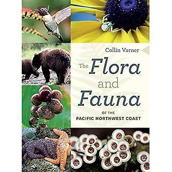 La flore et la faune de la côte nord-ouest du Pacifique