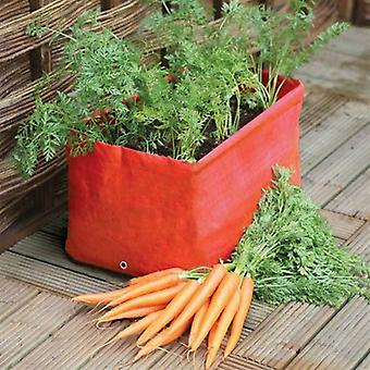 Haxnicks Carrot Patio Planters - Pack of 2