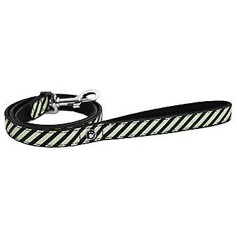 Wag N Walk Designer Lead Mint Stripe 3/4