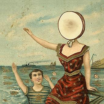 Neutral Milk Hotel - In the Aeroplane Over the Sea [Vinyl] USA import