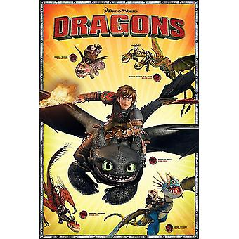 Train your Dragon made easy 2 character Board the main characters of the Dragon Rider by Bailey on a poster (English)!
